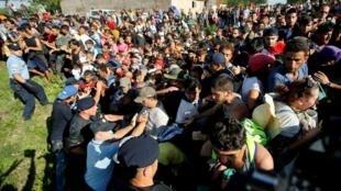 移民潮湧入克羅地亞2015年9月17日托瓦爾尼克(Tovarnik)