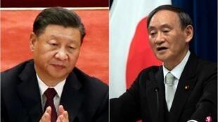 组合图:中国国家主席习近平与日本首相菅义伟