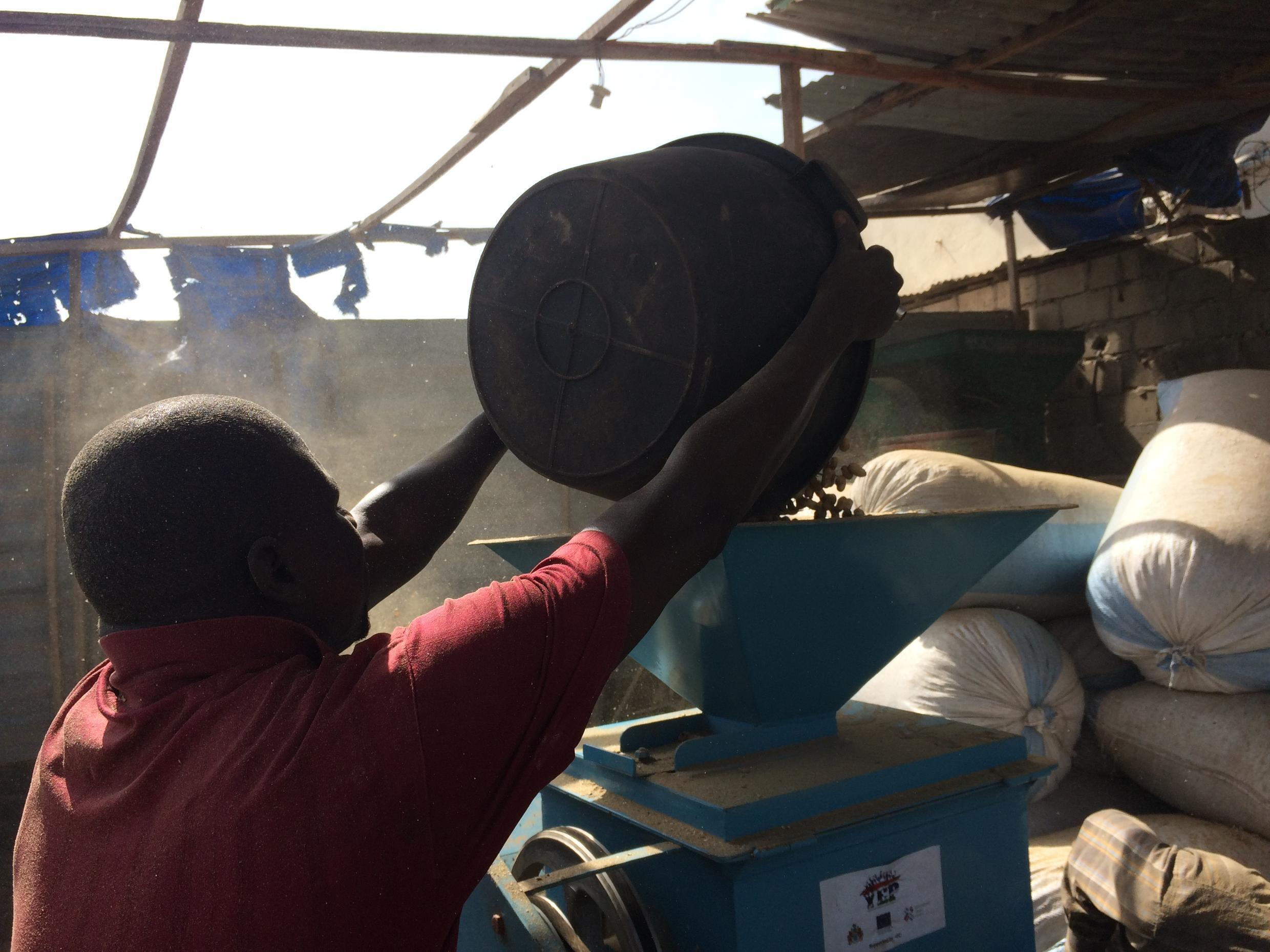 The de-shelling machine removes the groundnut from the shell.