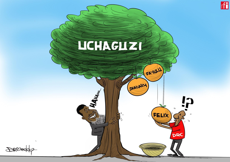 Ushindi wa Felix  Tshisekedi umewashangaza wengi