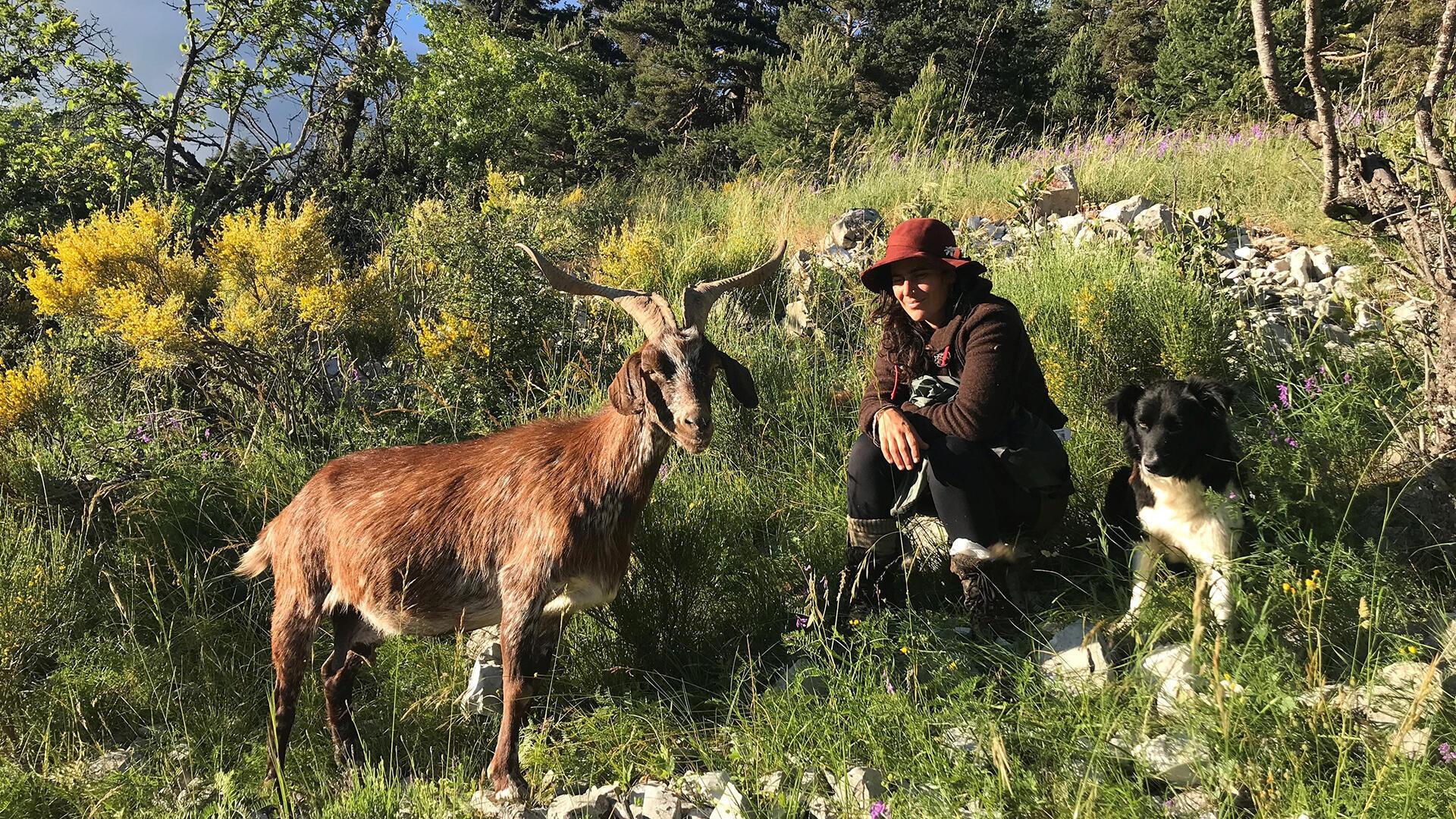 Léa Coelho, bergère dans les Alpes de Haute-Provence avec sa chienne Piano, pendant son estive qui va durer quatre mois.