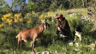 SI LOIN SI PROCHE_Photo de UNE - Léa Coelho bergère dans les Alpes de Haute Provence