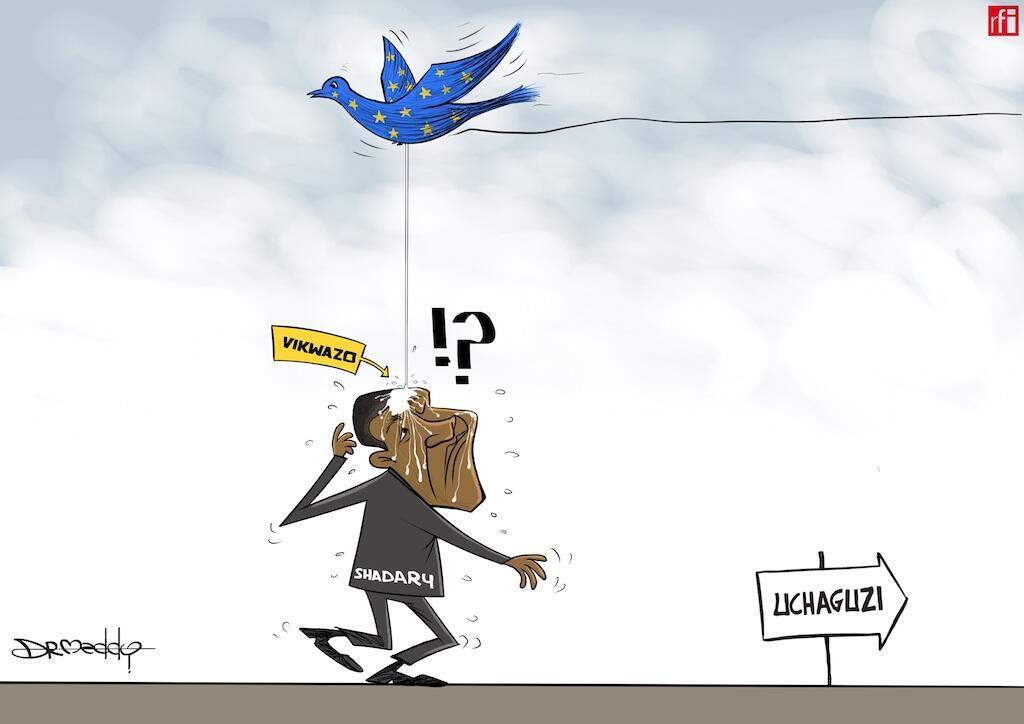Jumuiya ya Kimataifa imeshindwa kushtumu vikwazo vya Umoja aw Ulaya dhidi ya mgombea wa urais Emmanuel Shadary, Desemba 12, 2018.