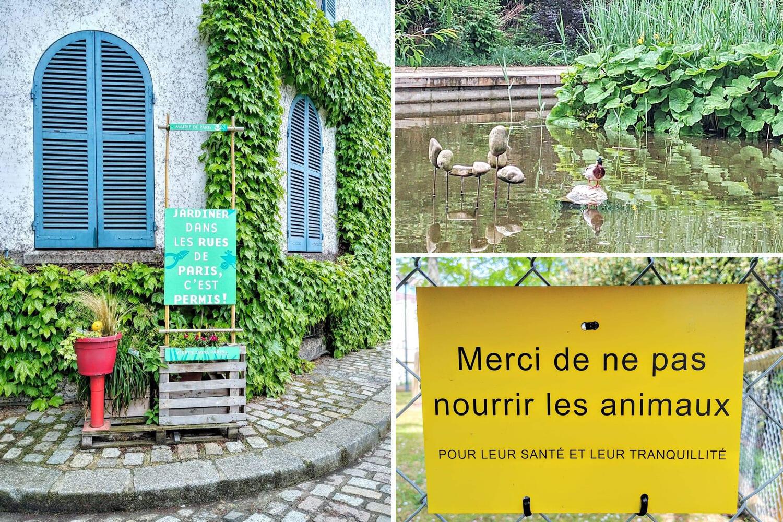"""Hiệp hội """"La Maison du Jardinage"""" chuyên hướng dẫn cách trồng rau làm vườn"""