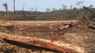 Une parcelle de terre brûlée en Amazonie (image d'illustration).