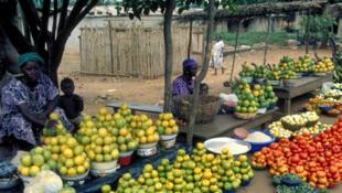 Au marché de Treichville en Côte d'Ivoire, on ne trouve quasiment plus de viande de brousse.