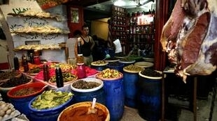 Les réfugiés palestiniens au Liban peuvent maintenant exercer toutes les professions.