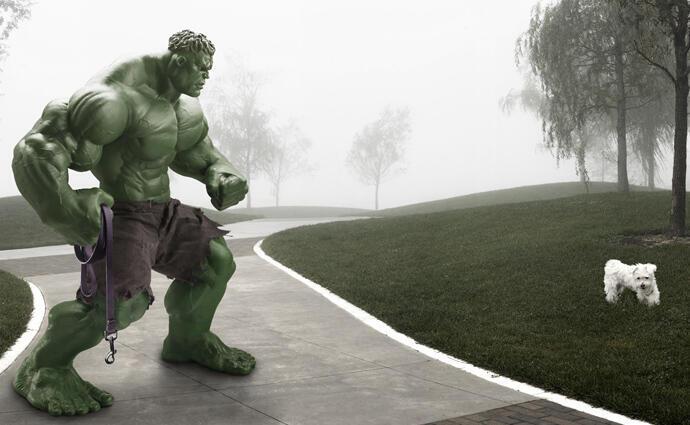 Según Ian Pool, Hulk saca su perro a caminar.