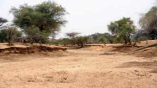 Un wadi asséché en Afrique.