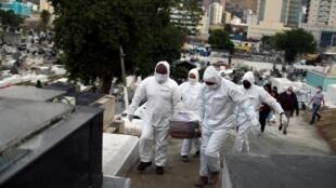Des employés du cimetière de Nova Iguacu, à Sao Paulo, transportent la dépouille d'une victime du coronavirus, le 16 juillet 2020.