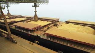 Movimentação de grãos no Corredor de Exportação