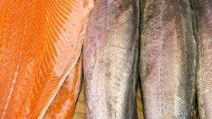 Le saumon a déjà disparu des étals des supermarchés en Chine, depuis qu'on a retrouvé des traces de Covid-19 sur une planche de découpe du gigantesque marché de Xifandi (image d'illustration).