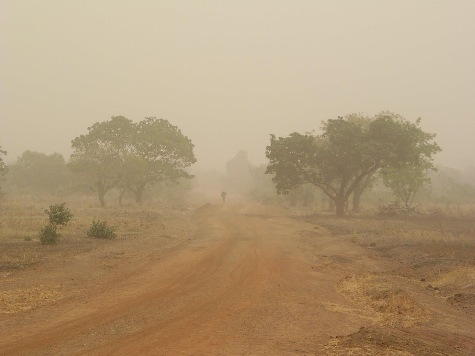 Yadda kura ke tashi a lokacin hunturu a kasashen Africa