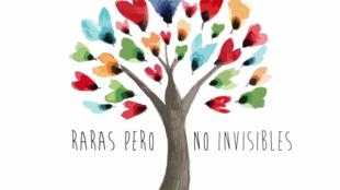 Diseño gráfico del audiovisual producido por Sombradoble, España, consagrado a las enfermedades raras.