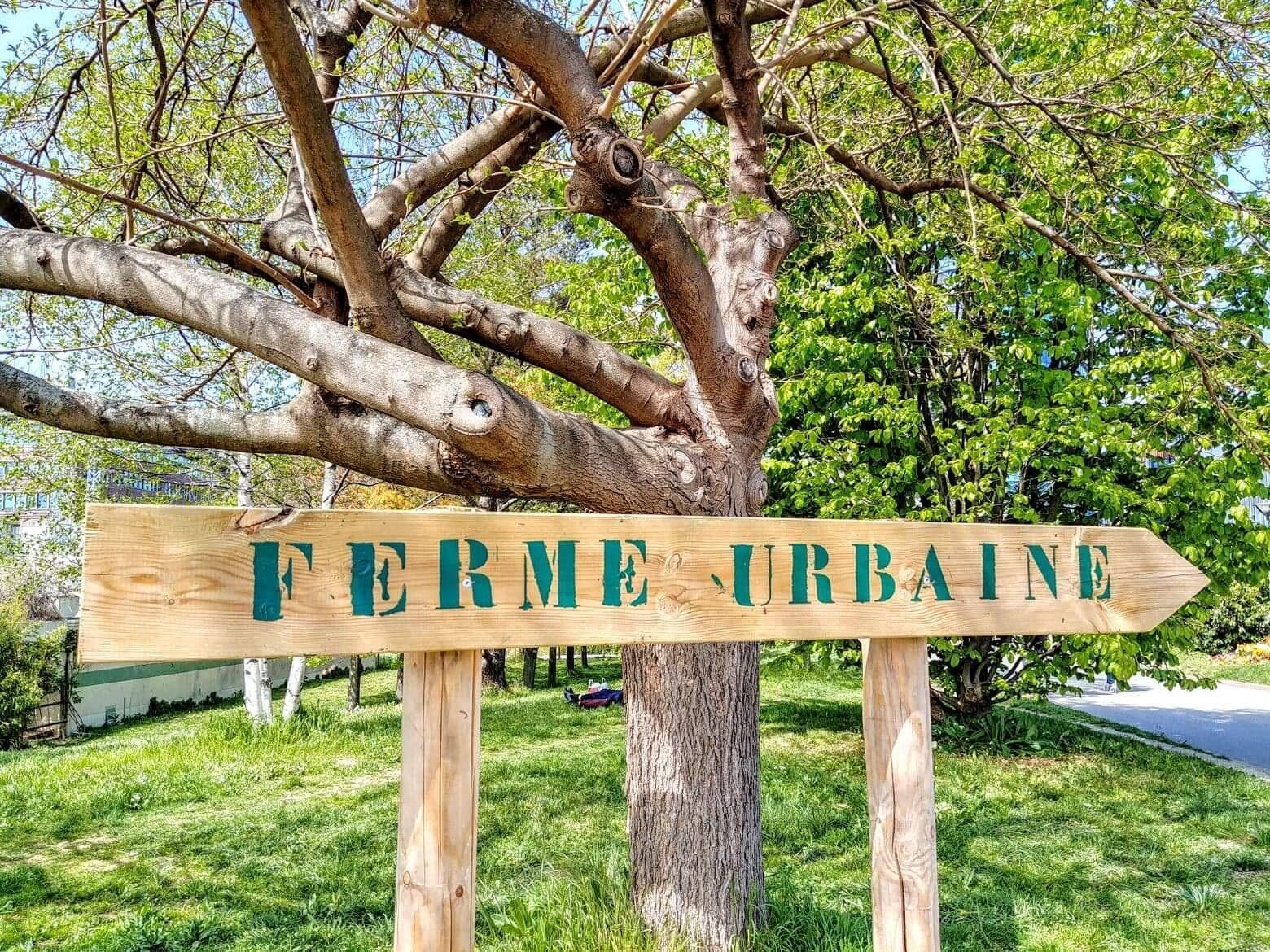 """Lối vào """"nông trại thành phố"""" tại công viên Kellermann (Paris quận 13)"""