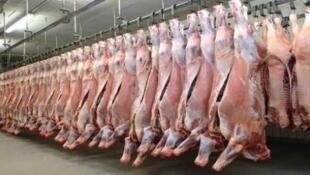افزایش بی سابقه قیمت گوشت گوسفند در ایران