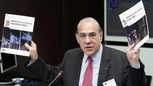 Al presentar el estudio económico sobre la zona euro y Europa el 27 de marzo de 2012, Angel Gurría, secretario general de la OCDE, insistió en que es necesario avanzar en la aplicación de medidas que permitan restablecer la confianza y sostener la demanda.