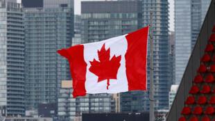 多倫多上空的加拿大國旗