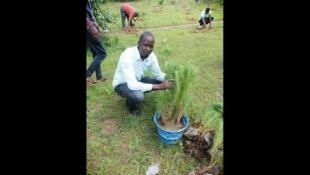 Mammadu Juhe BAH, hooreejo UGAVA Gine, fedde daraniinde taariindi Afrik