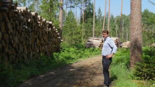 Le jeune scientifique Rafal Krawczyk conteste les arguments du gouvernement polonais qui abat des arbres centenaires dans la forêt de Bialowieza.