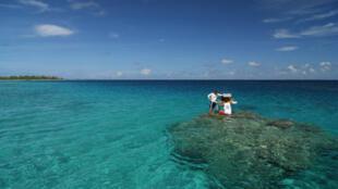 Chercheurs sur le terrain en Polynésie francaise