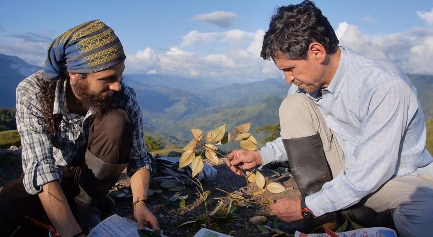 Julian Betancur y Cristian Castro en 'Homo Botanicus'