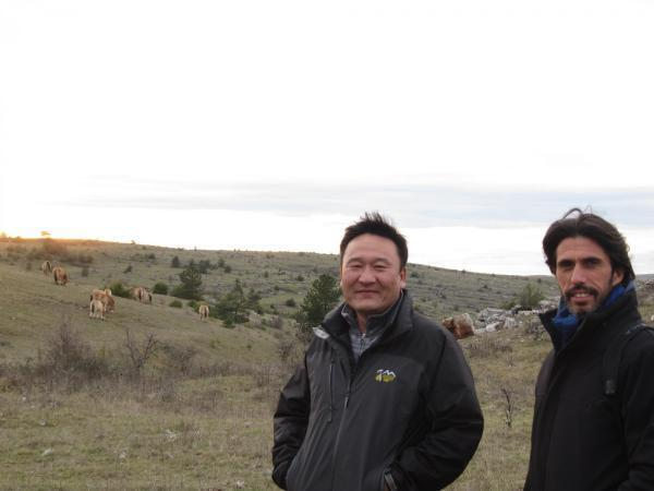 Munkhbat Tserendorj (L), executive director of Khomyn Talyn Takhi and Laurent Tatin (R), the science and conservation programmes manager of the French TAKH ngo.