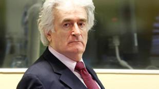 Radovan Karadzic a gaban kotun Hague