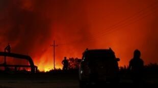 Cháy khu trồng cây dầu cọ ở huyện Bangko Pusako, tỉnh Riau, Indonesia, ngày 22/06/2013