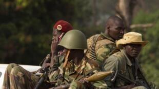 Wapiganaji wa kundi la zamani la Seleka katika mitaa ya Bangui, Januari 27, 2014.