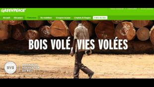 Greenpeace vient de publier une enquête sur le bois illégal en provenance d'Afrique centrale.