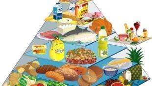 Tháp dinh dưỡng (DR)