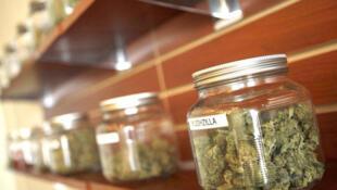 Des bocaux de marijuana légale dans un dispensaire en Californie aux Etats-Unis.