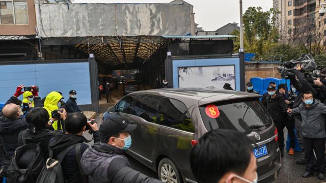 研究显示新冠疫情爆发前 武汉有近5万头活体野生动物出售(photo:RFI)