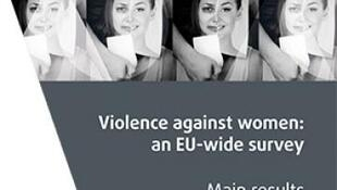 European Union Agency for Fundamental Rights, Violence against women, March 2014 survey.