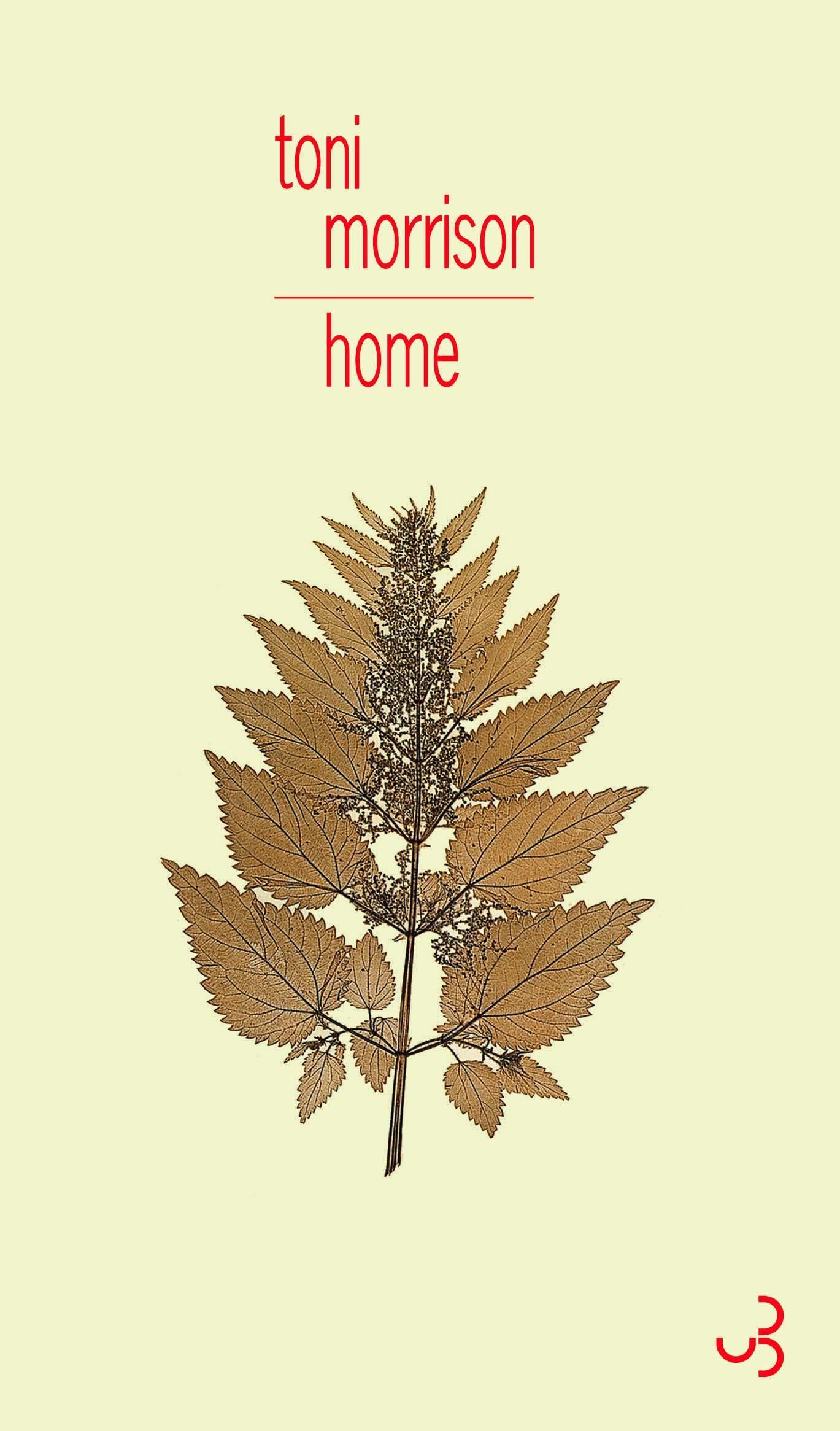 Home est un road-movie à travers l'Amérique ségrégationniste des années 1950.