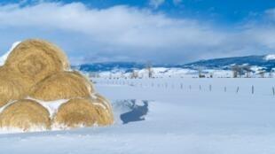 Une plaine enneigée à Jackson, dans le Wyoming, aux Etats-Unis.