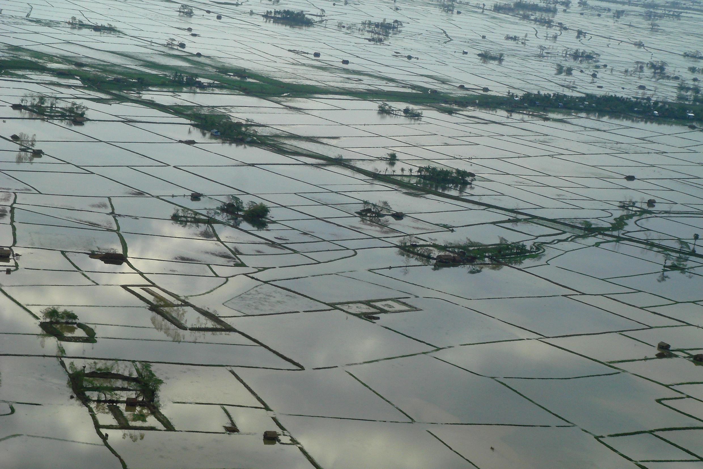 Một cảnh lụt lội tại vùng châu thổ Irrawaddy, Miến Điện.
