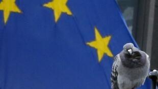 Foto mostra um pombo diante da bandeira da União Europeia, em Bruxelas; a instituição recebeu o prêmio Nobel da Paz nesta sexta-feira.