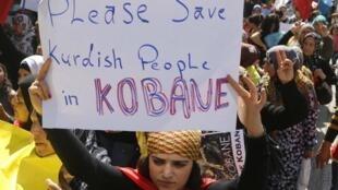 Manifestation de Kurdes en faveur d'une intervention turque en Syrie.
