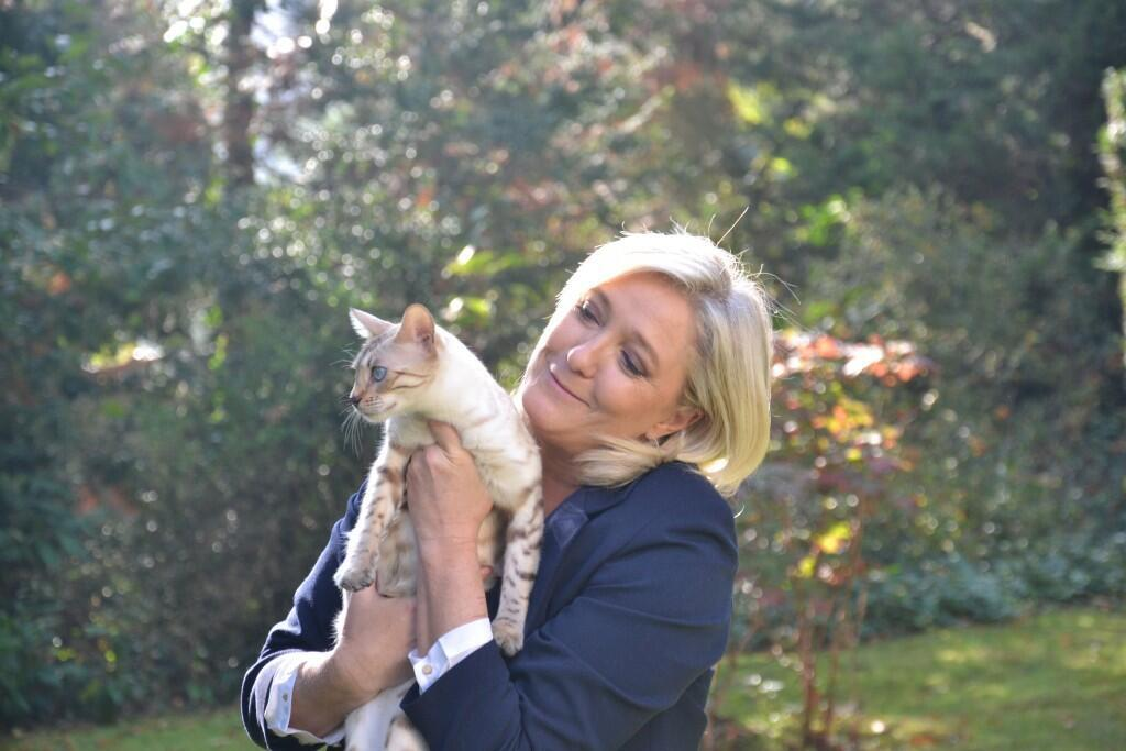 Марин Ле Пен с одной из своих кошек