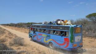 Les routes de la région de Dadaab, au Kenya, sont rendues dangereuses par les shebabs.
