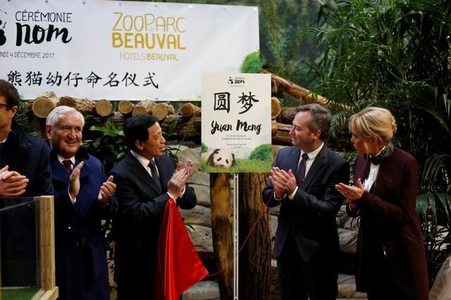 法國第一夫人布吉麗特馬克龍(右一)和中法官員出席在法國出生的熊貓圓夢命名儀式 2017年12月4號