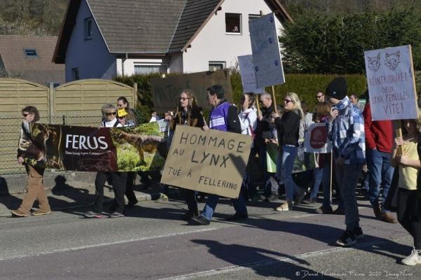 Demonstration in Saint-Amarin on February 15, 2020.