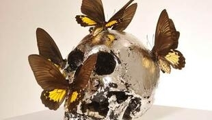 Skull with Butterflies, by Philippe Pasqua