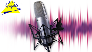 Radio Gazelle consacre des programmes spéciaux liés à la situation en Algérie.