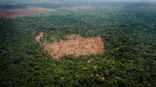 Un área deforestada en medio de la Amazonia, en el estado brasileño de Pará, el 14 de octubre de 2014