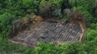 Projeto de Monitoramento do Desmatamento na Amazônia Legal por Satélite (Prodes), do Instituto Nacional de Pesquisas Especiais (Inpe). 28/12/17