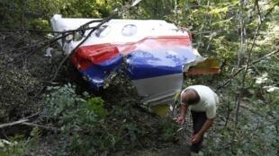 """Обломок """"Боинга"""" рейса MH17. Донбасс, 26 июля 2014"""