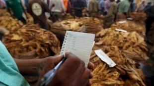 La plupart des multinationales au Zimbabwe oeuvrent dans le secteur des mines, des banques et du commerce de détail.